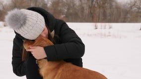 Het mooie meisje strijkt en voelt droevig voor haar park van de hondwinter stock foto