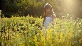 Het mooie meisje verzamelt boeket van wildflowers stock footage