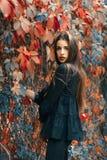 Het mooie model stellen in de herfstpark Stock Foto's