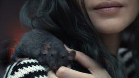 Het mooie mooie meisje houdt een hand een klein huis weinig dichte omhooggaand van de huisdieren bruine muis Zij tikt haar kussen stock video