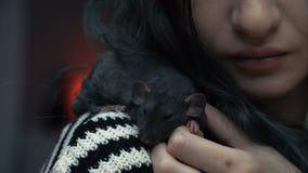 Het mooie mooie meisje houdt een hand een klein huis weinig dichte omhooggaand van de huisdieren bruine muis Zij tikt haar kussen stock footage