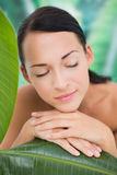 Het mooie naakte donkerbruine stellen met groene bladeren Royalty-vrije Stock Foto's