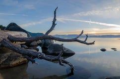Het Mooie het Noordenmeer Tahoe in Nevada royalty-vrije stock fotografie