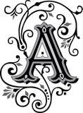 Het mooie ornament, voorziet A van letters Stock Afbeelding