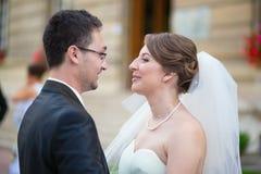 Het mooie Paar van het Huwelijk Stock Afbeeldingen