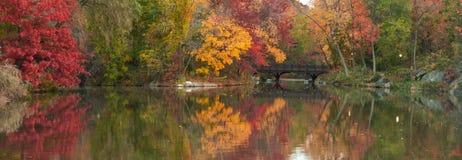 Het mooie panorama van de Daling in Central Park. Stock Foto's