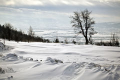 Het mooie panorama van de winterbergen Royalty-vrije Stock Foto's