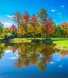 Het mooie park met de herfstgebladerte royalty-vrije stock foto's