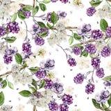 Het mooie patroon van de waterverflente met braambes en bloemenanemoon stock illustratie
