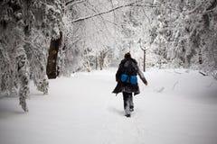 Het mooie portret van de de wintervrouw dat in bergen wordt genomen Stock Afbeelding