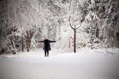 Het mooie portret van de de wintervrouw dat in bergen wordt genomen Stock Foto