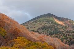 Het mooie seizoen van de de herfstkleur bij Hakkoda-gebied Royalty-vrije Stock Afbeeldingen