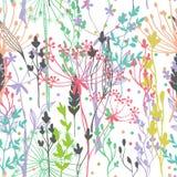 Het mooie silhouet van het kleurengras Royalty-vrije Stock Afbeelding