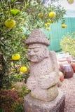 Het mooie steenidool in het oranje landbouwbedrijf voor toerist neemt een selfi Stock Afbeelding