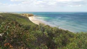 Het mooie strand in Torquay in de zomer, Australië, schuine stand beweegt zich omhoog stock videobeelden