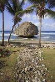 Het mooie Strand van Barbados Stock Afbeeldingen