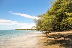 Het mooie strand van Maui Stock Foto
