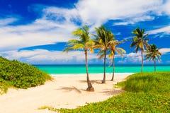 Het mooie strand van Varadero in Cuba royalty-vrije stock fotografie