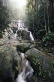 Het mooie tropische waterval vallen stock afbeeldingen