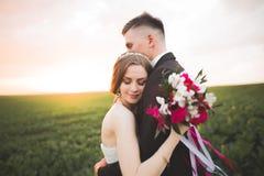Het mooie van de van de huwelijkspaar, bruid en bruidegom stellen op gebied tijdens zonsondergang royalty-vrije stock foto