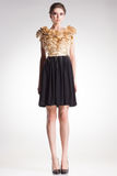 Het mooie vrouw model stellen in elegante kleding Stock Fotografie