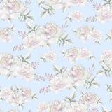 Het mooie waterverfpatroon met pioen en nam bloemen toe Patroon met Royalty-vrije Stock Fotografie