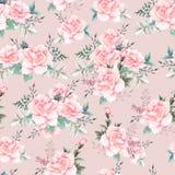 Het mooie waterverfpatroon met pioen en nam bloemen toe Patroon met Stock Fotografie