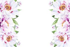 Het mooie witte kader van de pioengrens Boeket van bloemen Bloemendruk Tellerstekening stock illustratie