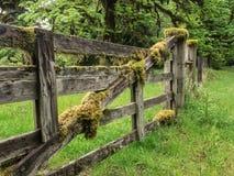 Het mos behandelde houten omheining stock fotografie