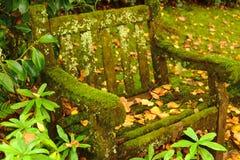 Het mos en de vegetatie behandelden vuile parkbank in tuin Royalty-vrije Stock Afbeelding