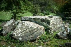 Het mos en het korstmos groeien op een steen Macro achtergrond van Lichen Moss-steen De herfstaard van Azerbeidzjan stock afbeelding