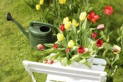 Het motief van de de lentetuin Stock Foto