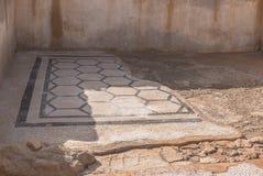 Het Mozaïek van het Masadapaleis stock foto