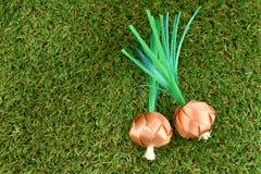 Het muntstuk die met Lint vouwen wordt gevormd een de lenteui of groene ui op groen gras voor de ceremonie van de ordeningsverspr stock afbeelding