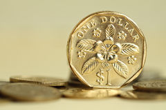 Het muntstuk van Singapore Stock Foto