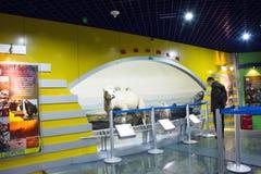Het Museum van Aziatisch China, Peking, Peking van Biologie Stock Foto