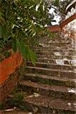 Het Museum van Biscaye en van de Tuinensteen Treden Stock Afbeeldingen