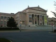 Het Museum van Chicago Royalty-vrije Stock Afbeeldingen