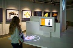Het Museum van de Biologie Royalty-vrije Stock Fotografie