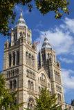 Het Museum van de Biologie in Londen Stock Fotografie