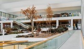 Het Museum van Menselijke Evolutie in Burgos, Spanje is een museum voor wat betreft menselijke evolutie stock afbeeldingen