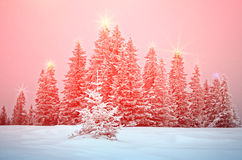 Het mystieke de winterlandschap met bomen bij Kerstmislichten glanst Royalty-vrije Stock Afbeelding