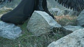 Het mythische schepsel bevindt zich op stenen op kust, dame in lange elegante donkere kleding met kantkokers en fladderende boord stock videobeelden