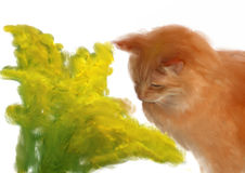 Het naïeve schilderen, oranje kat het snuiven de lentebloemen Stock Afbeelding