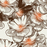 Het naadloze behang van de aantrekkingskracht met bloeiende rozen. Stock Afbeelding