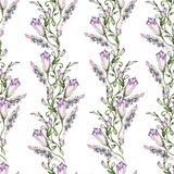 Het naadloze bloemenpatroon, schitterende Oostindische kers, schilderde hands-free borstel, waterverf Stock Fotografie