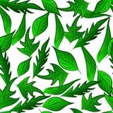Het naadloze groene patroon doorbladert de heldere zomer Royalty-vrije Stock Afbeeldingen