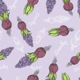 Het naadloze patroon is de bloem vectorillustratie van de hyacintlente Stock Foto's
