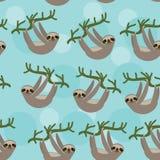 Het naadloze patroon drie-Toed luiaard op groene tak Stock Afbeelding