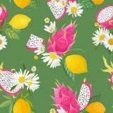 Het naadloze patroon met draakvruchten, pitaya, citrusvruchtencitroen en madeliefje bloeit achtergrond Hand getrokken illustratie stock illustratie